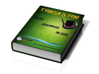 Elementary Turkish Pdf